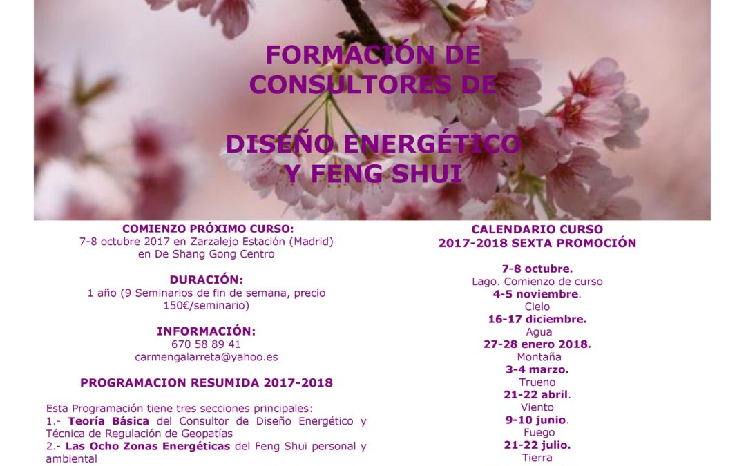 FORMACIÓN DE CONSULTORES DE DISEÑO ENERGÉTICO Y FENG SHUI
